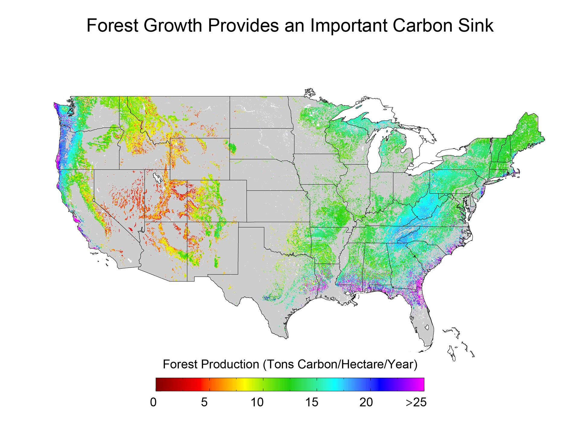 Forests National Climate Assessment - Us forest biomass map