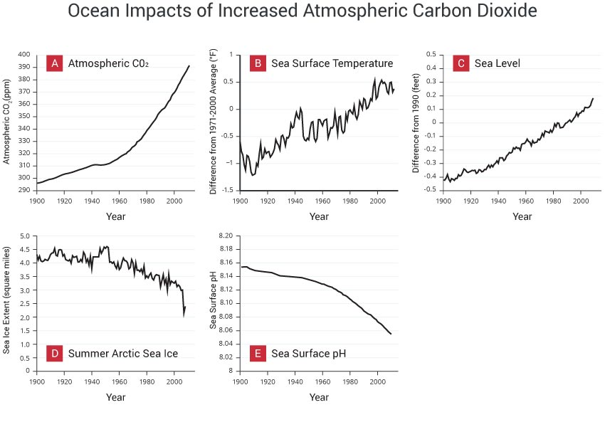 Ocean Impacts of Increased Atmospheric Carbon Dioxide
