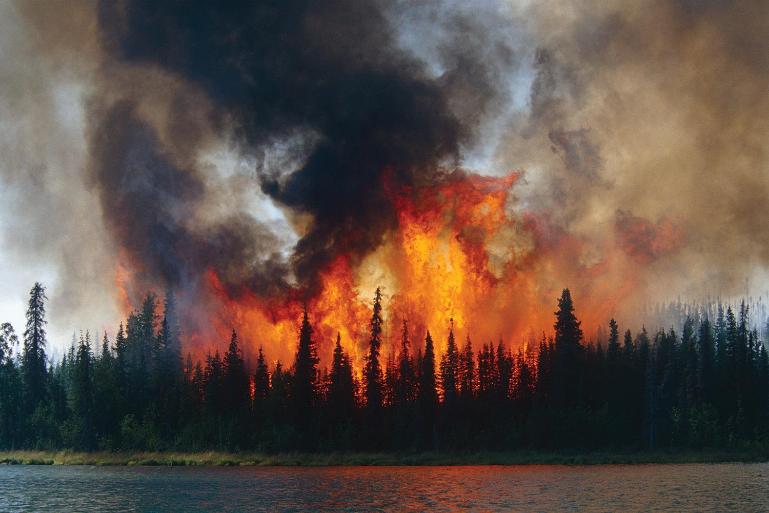 the effects of global warming on wildfires Wildfires and global warming by josh patashnik  conceded in his statement that one consequence of global warming is to create conditions that would amplify the effects of wildfires.