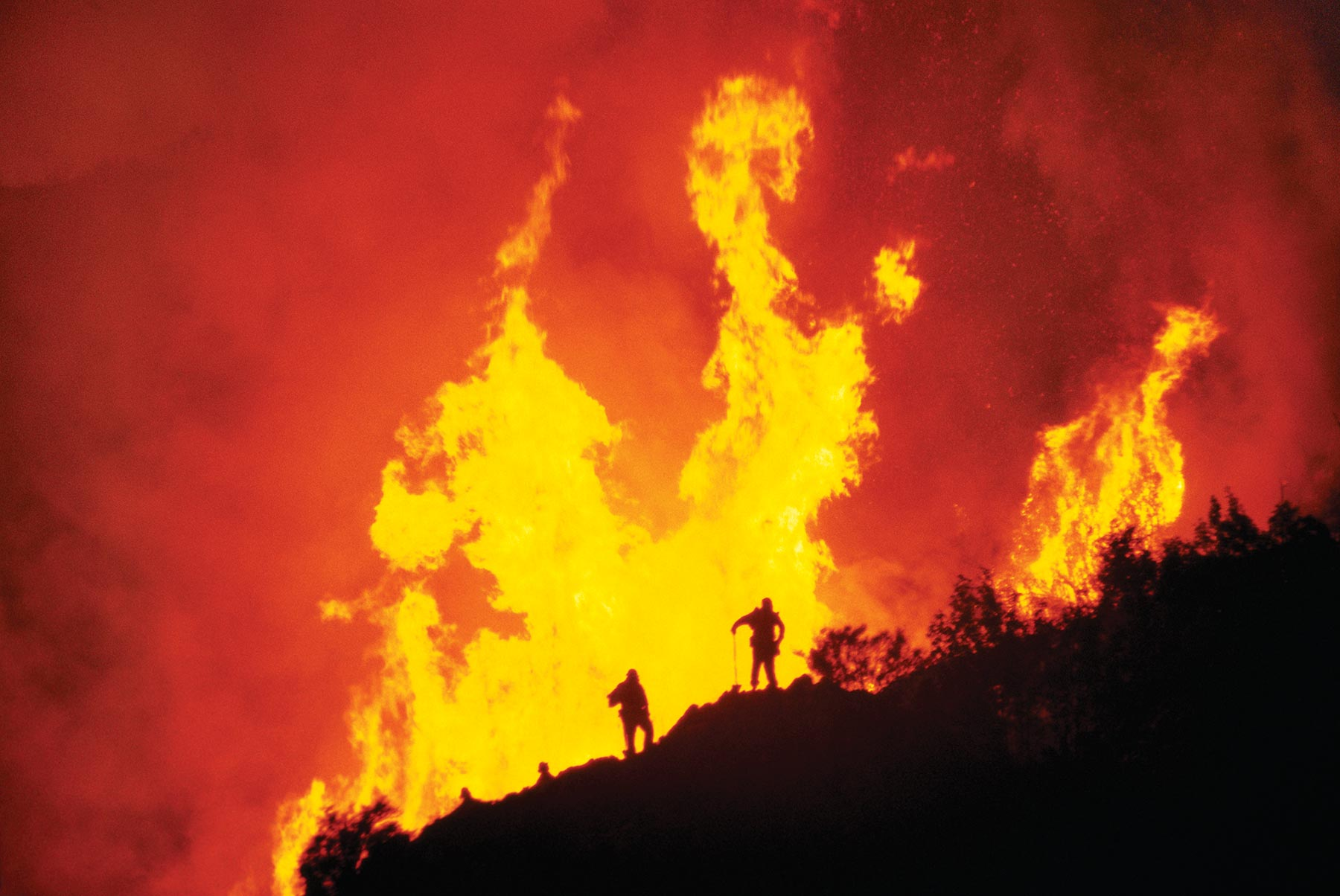 Firefighters and wildfire